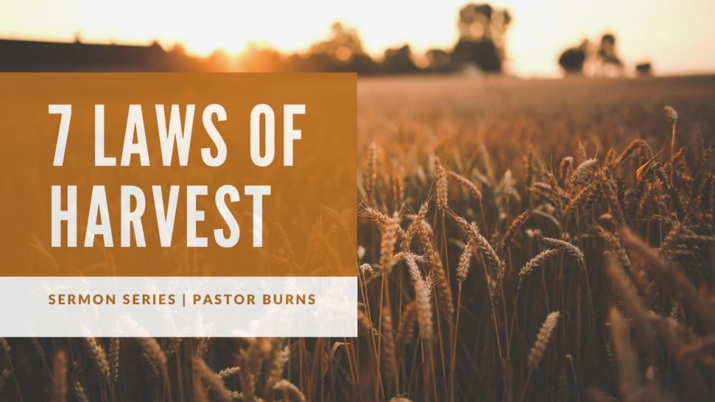 Sermon Series - The 7 Laws of Harvest